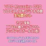 VDC Photo Present
